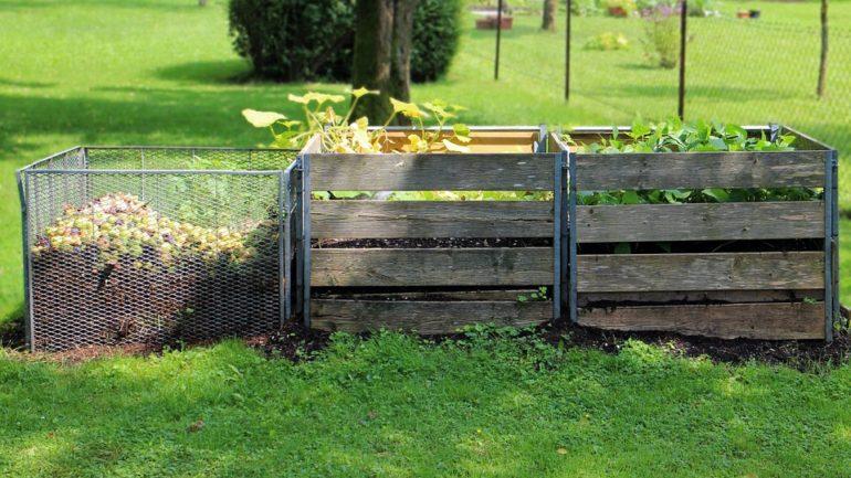 Comment choisir son composteur : pour un mode de vie plus écolo