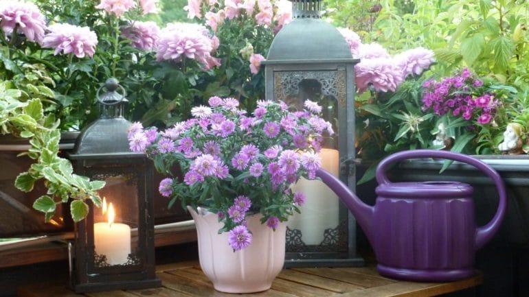 Jardin balcon : Toutes les recommandations pour fleurir votre bout de balcon