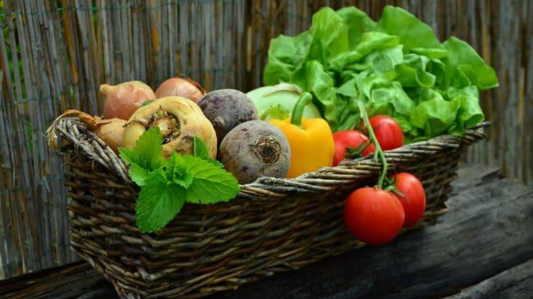 Légume d'hiver : Quand les planter et lesquels cuisiner ?