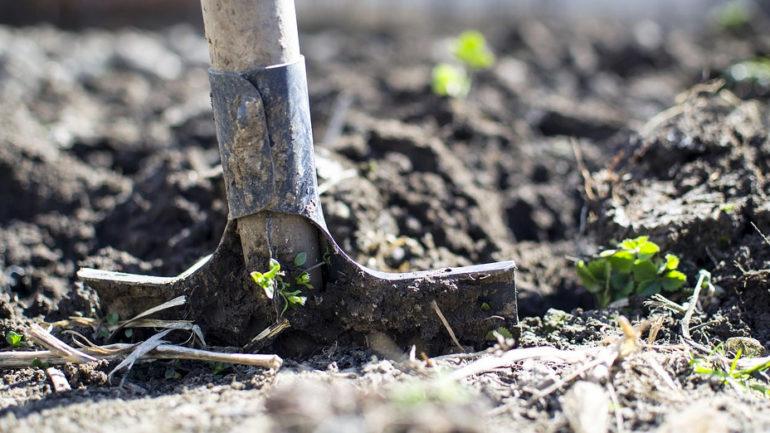 Comment faire un jardin en permaculture?