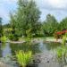 Comment créer un jardin japonais ou un jardin zen?
