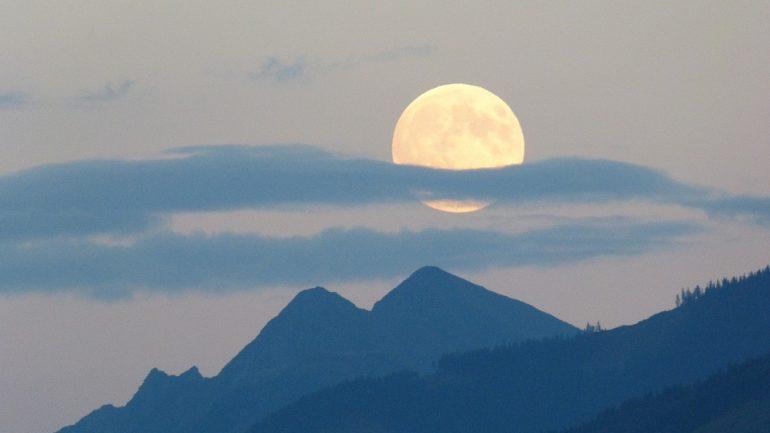 Le jardinage avec la lune: qu'est-ce que c'est ?